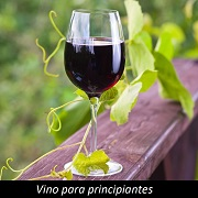 Libro Vino para principiantes
